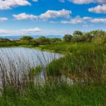 Potrzeba nam więcej parków narodowych i krajobrazowych