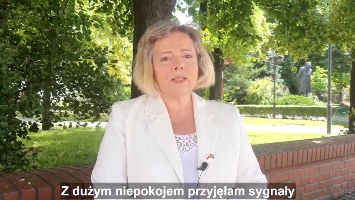 Polonia musi mieć możliwość głosowania 28.06.2020!